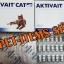 Aktivait For Cat thumbnail 3